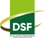 DSF Logo (small)